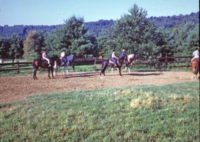 1967. L'équitation dans le manège