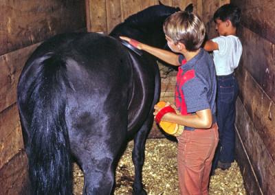 1968. L'Équitation. Les chevaux (8) logeaient dans la grange.