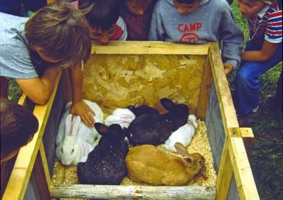 1986. On avait acheté des lapins pour la Ruche. On avait décidé de les laisser en liberté. À la fin du camp ils s'étaient reproduits et on avait dû faire une grande chasse pour les retrouver...