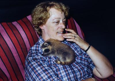 1986. Les bébés ratons ont été nourris au biberon. Ils passèrent l'été avec nous. - Andrée Gagnon